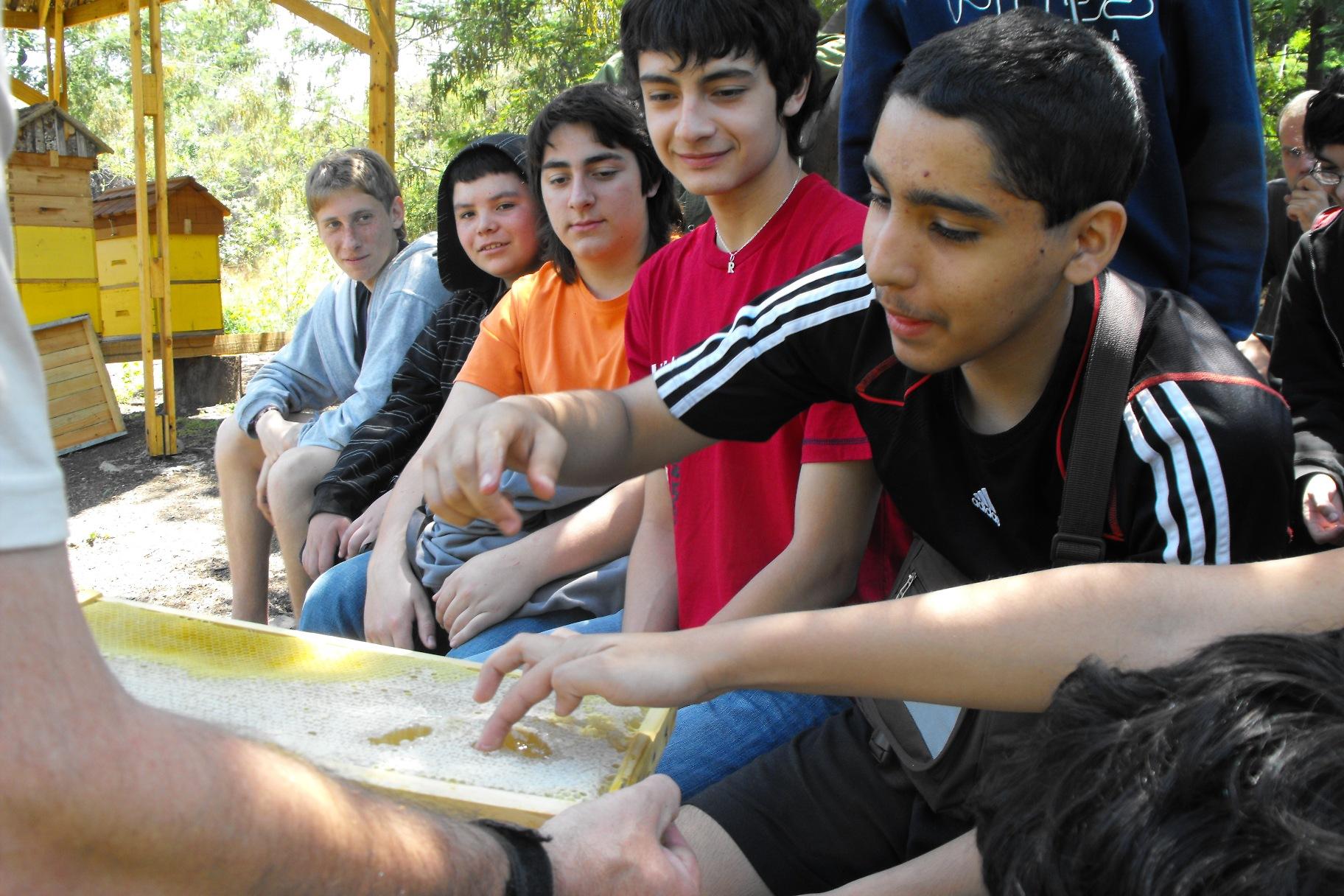 Jóvenes del Rubén Darío en apiario disfrutando de la miel en panal, recien retirada de una de nuestras colmenas demostrativas. Nov. 2010